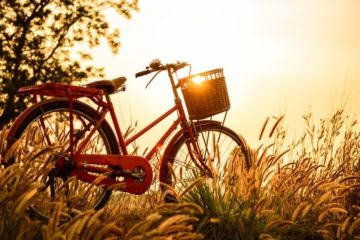 lopasbiztositas biciklire
